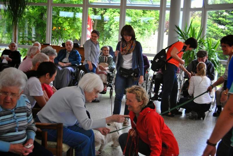 2014-05-27: Besuch im Alten- und Pflegeheim St. Michael - DSC_0242.JPG