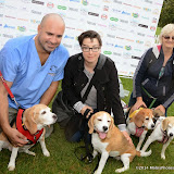 WWW.ENTSIMAGES.COM -     Marc Abraham (TV Veterinary Business Development and Coaching Consultant) and Su Perkins   at       Pup Aid at Primrose Hill, London September 6th 2014Puppy Parade and fun dog show to raise awareness of the UK's cruel puppy farming trade. Pup Aid, the anti-puppy farming campaign started by TV Vet Marc Abraham, are calling on all animal lovers to contact their MP to support the debate on the sale of puppies and kittens in pet shops. Puppies & Celebrities Return To Fun Dog Show Fighting Cruel Puppy Farming Industry.                                              Photo Mobis Photos/OIC 0203 174 1069