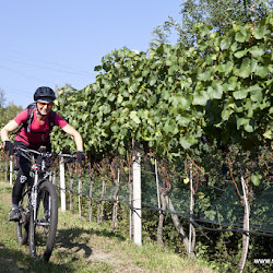 Biobauer Rielinger Tour 14.09.16-5598.jpg