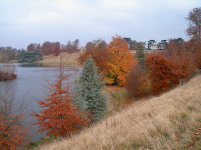 Overlooking The Lake, Blenheim Palace
