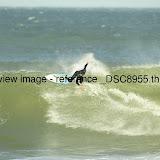 _DSC8955.thumb.jpg