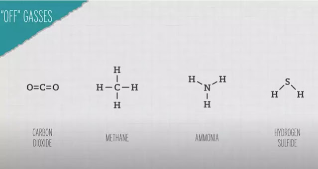 Carbon dioxide methane and ammonia gases