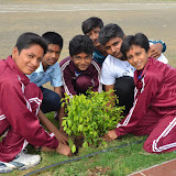 Gurukul Green Revolution (18).jpg