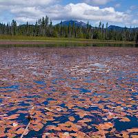 20110921_hosmer_lake_P9180477