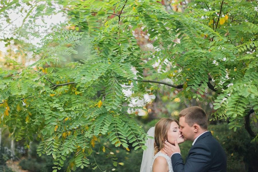 शादी का फोटोग्राफर Roman Serov (SEROVs)। 09.11.2016 का फोटो