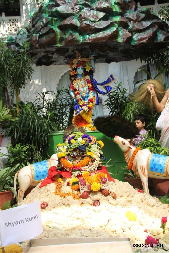 Govardhan Annakut Darshan  At ISKCON Juhu on 31st Oct 2016 (3)