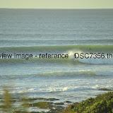 _DSC7356.thumb.jpg