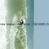 _DSC9685.thumb.jpg