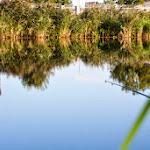 20140830_Fishing_Shpaniv_004.jpg