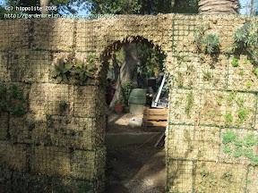idée : mur en sphaigne autoportant avec un arche. des ideés originales pour décorer vos abords de piscine et cacher un vis à vis tél 0615063540