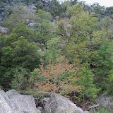 Fall Vacation 2012 - 115_3962.JPG