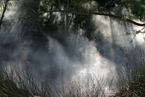 Sunlight streams through the steam, Rotorua Thermal Area