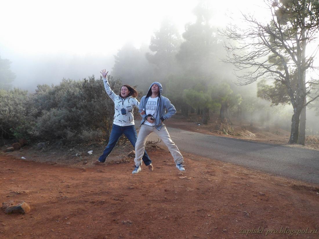 Гран Канария отдых в феврале, погода отзывы фото