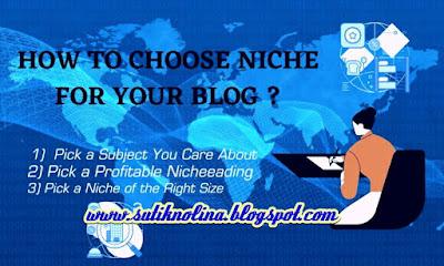 Cara Terbaik Memilih Niche Untuk Blog - Penting Pemula Wajib Tahu
