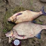 20160623_Fishing_Bakota_148.jpg