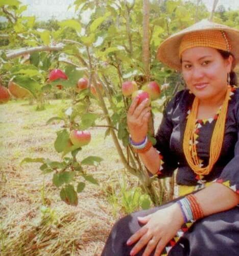 Apple Valley in Borneo