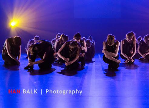 Han Balk Voorster Dansdag 2016-3967-2.jpg