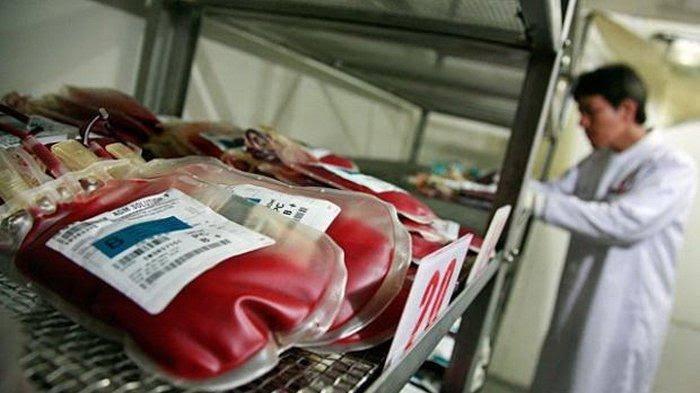 Stok Darah Minim, UTD La Temmamala Butuh Pendonor