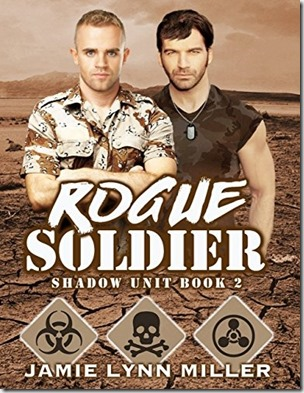 rogue soldier[3]