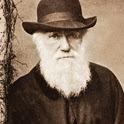 Charles Darwin Quotes, Zinnen, Citaten en Teksten