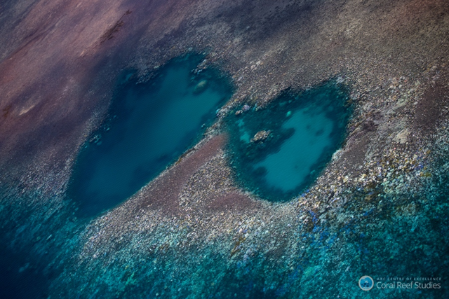 Coral bleaching on the Great Barrier Reef shows up as white and yellow patches visible from aerial surveys. Photo: Terry Hughes / ARC Centre of Excellence for Coral Reef Studies