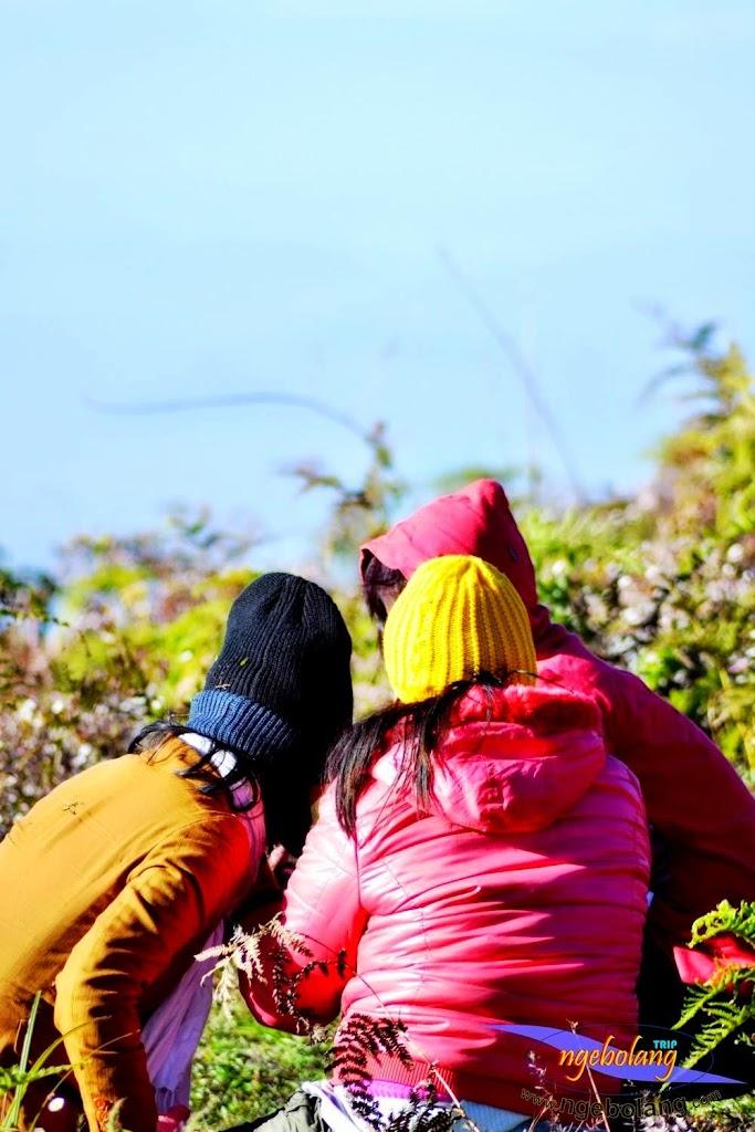 gunung prau 15-17 agustus 2014 nik 001