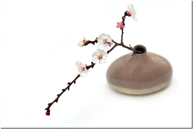 Asian bud vase with cherry blossoms-001