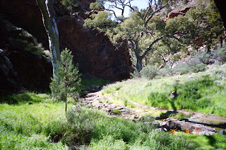 0036Flinders Ranges