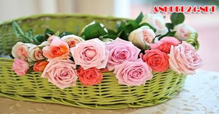 Lời chúc valentine thật ngọt ngào và sâu lắng nhất
