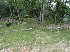 林道の下へ登山道は続く