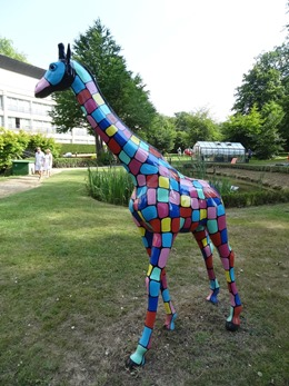 2018.07.22-058 girafe (17h33)