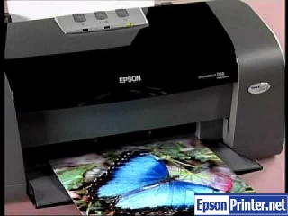 How to reset Epson D68 printer