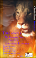 Cherish Desire Divinations: The Lioness (The Complete Four Part Series) featuring Heather, Heather, Erik, Helene, Max, erotica, shapeshifter