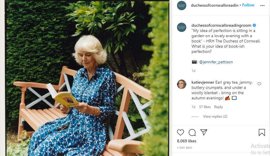 Duchess of Cornwall gets Royal Fans talking with Stunning New Portrait