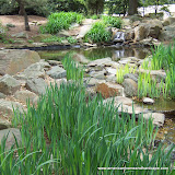 Waterscapes - 100_1072.JPG