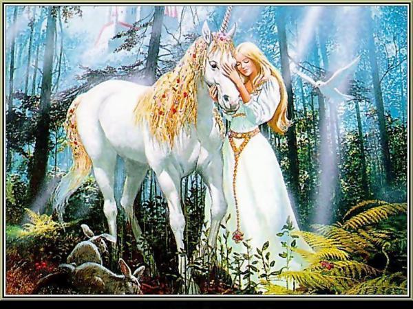 Amazing Partner For You, Spirit Companion 2