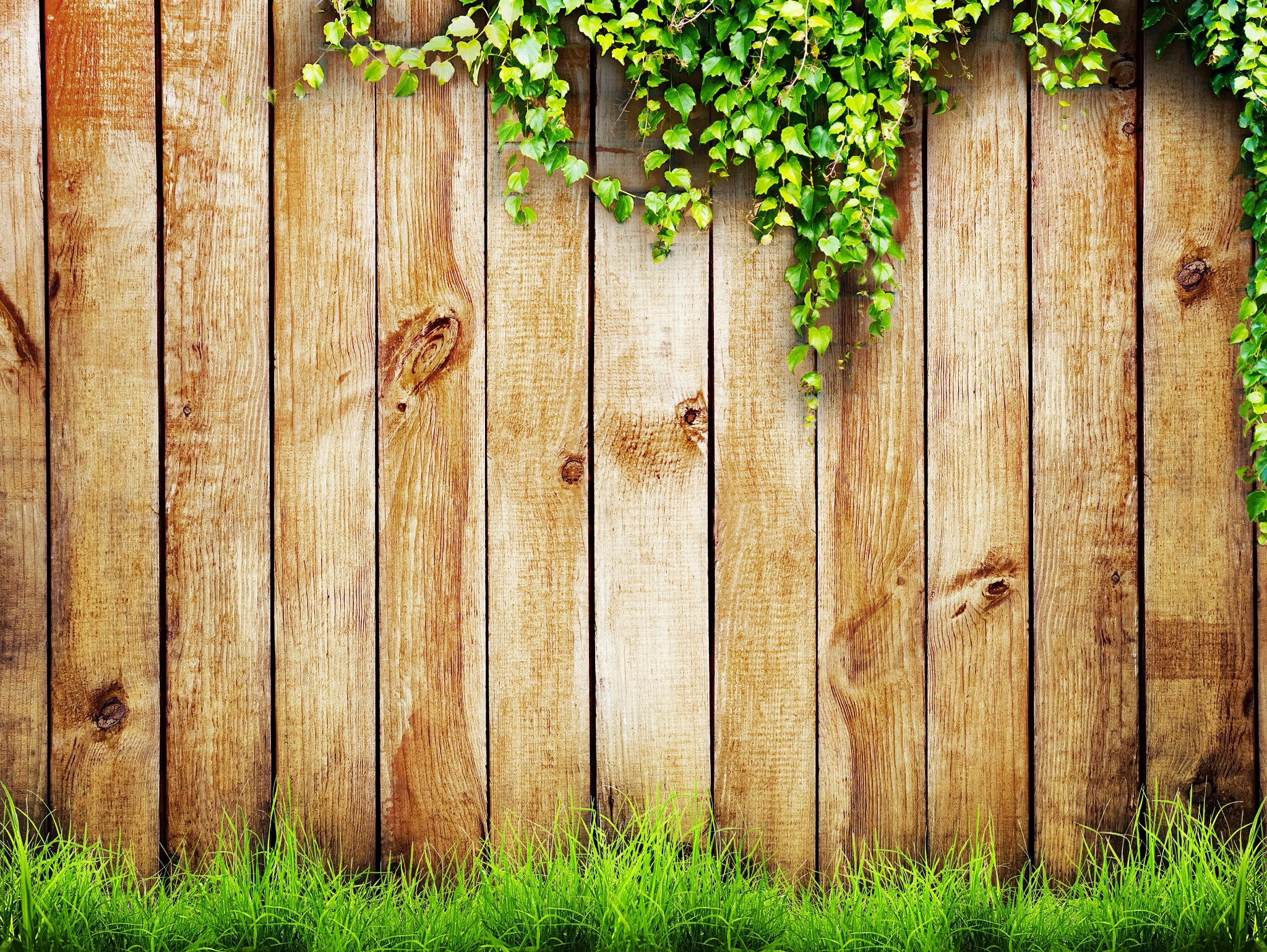 Gallery For > Fence Background