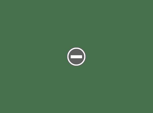 orszak Dionyzosa