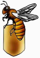 Photo: Biene verlässt die Wabe