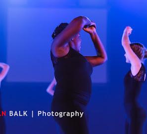 Han Balk Voorster Dansdag 2016-3495.jpg