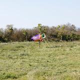 Campaments de Primavera de tot lAgrupament 2011 - _MG_2359.JPG