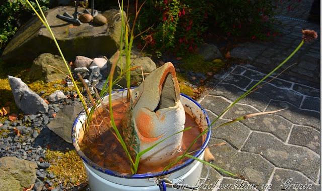 Ein neuer Miniteich für den Garten