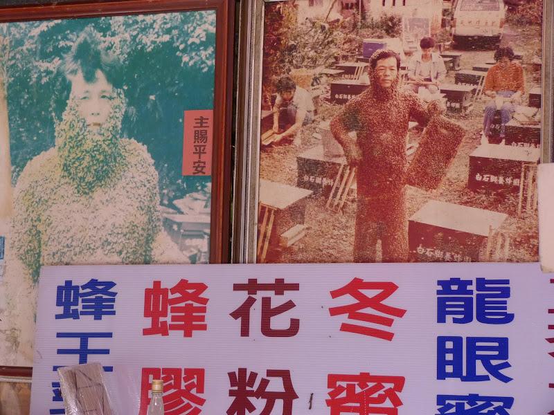 TAIWAN .Jiashi et aux alentours proches - P1000519.JPG