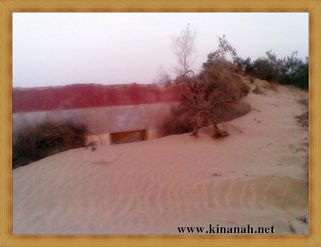 مواطن قبيلة الشقفة (الشقيفي الكناني) الماضي t8197-40.jpeg