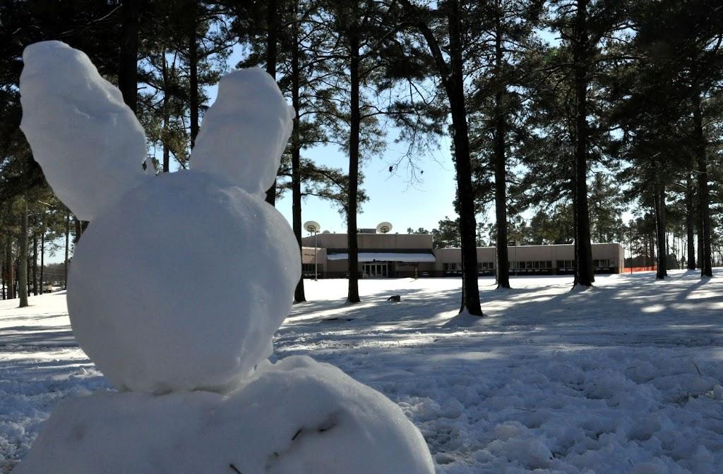 UACCH Snow Day 2011 - DSC_0031.JPG