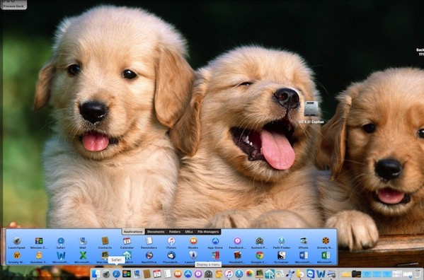 Adorable puppies selected as wallpaper