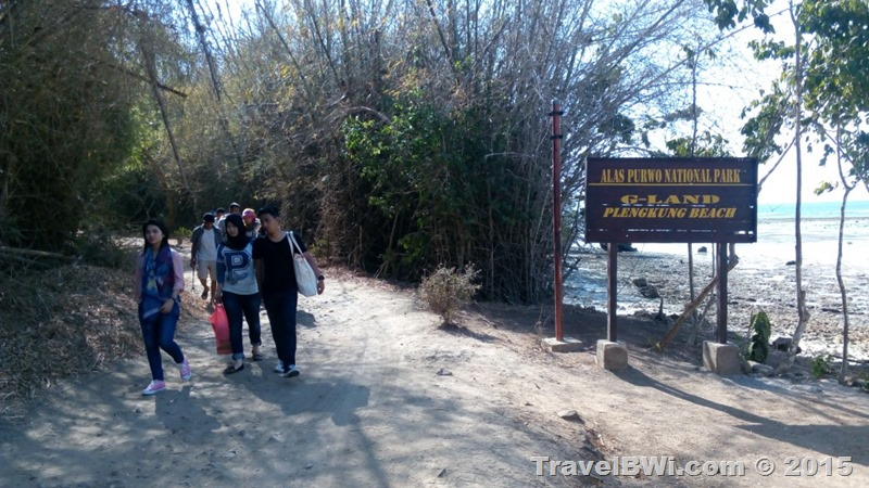 G-land Plengkung TN Alas Purwo - Trip Travel BWi Banyuwangi