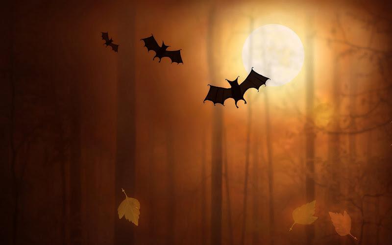 Helloween Bats, Halloween