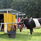 Paard & Erfgoed 2 sept. 2012 (99 van 139)