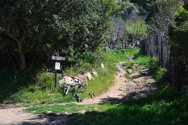 old Pueblo Trail